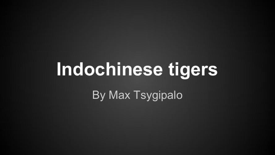 indochinese tiger flip book