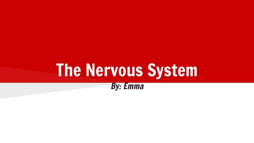 Body System Flipbook     Emma