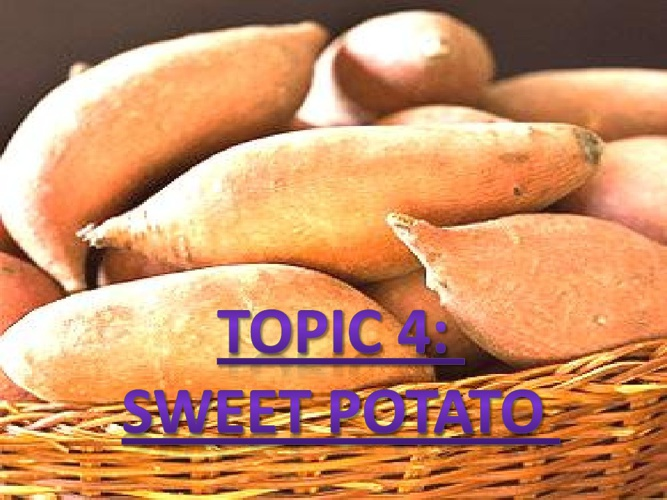 CHAPTER 4: Topic 4 (Sweet Potato)