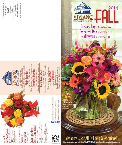 Viviano's Fall 2014 Catalog