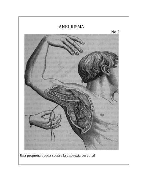 Revista Aneurisma 2