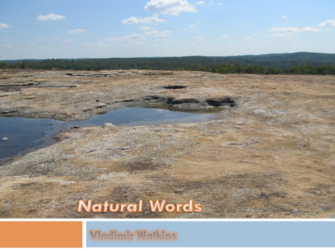 Natral Words