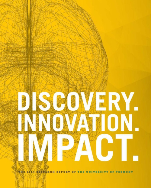 2014 UVM Research Report
