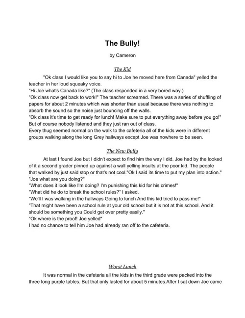 Camerons Realistic Fiction Story The Bully