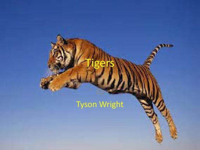 Tyson's Powerpoint