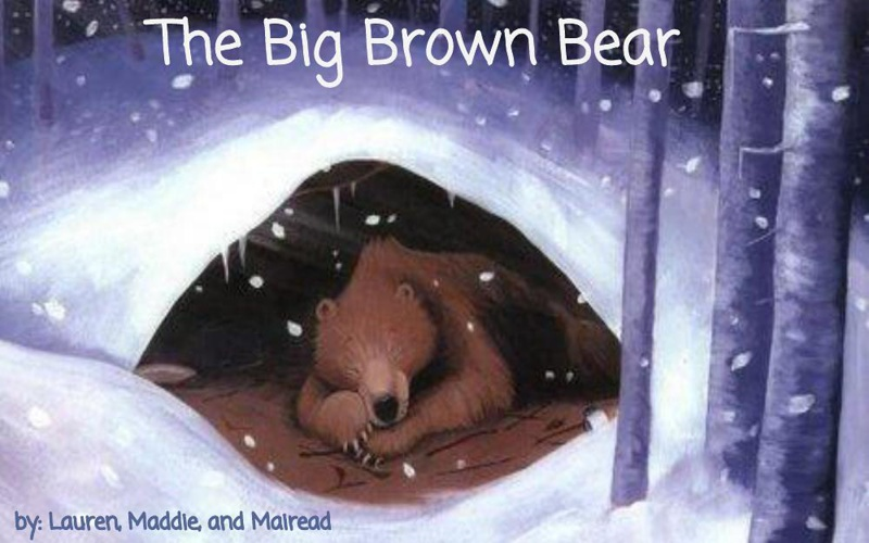 Childrens Book_The Big Brown Bear