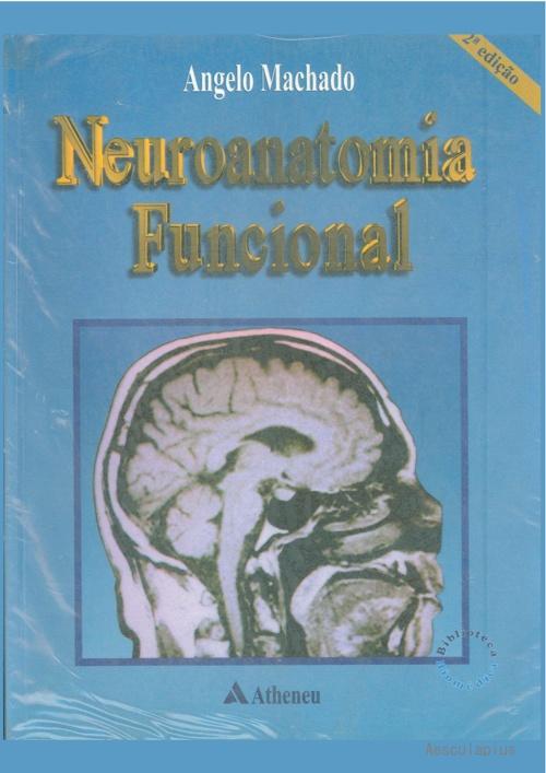 Neuroanatomia - Machado