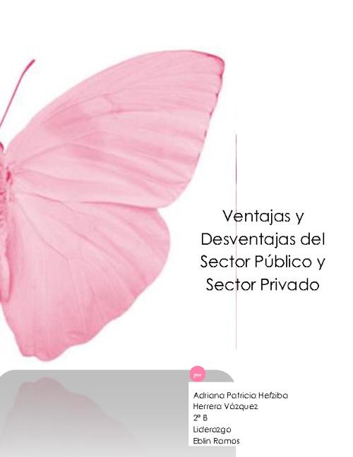 Ventajas & Desventajas del Sector Público y Privado.