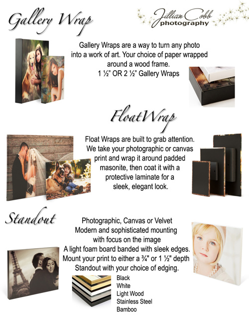 Product Guide for Jillian Cobb Photography