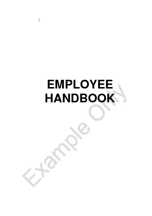 Example Employee Handbook
