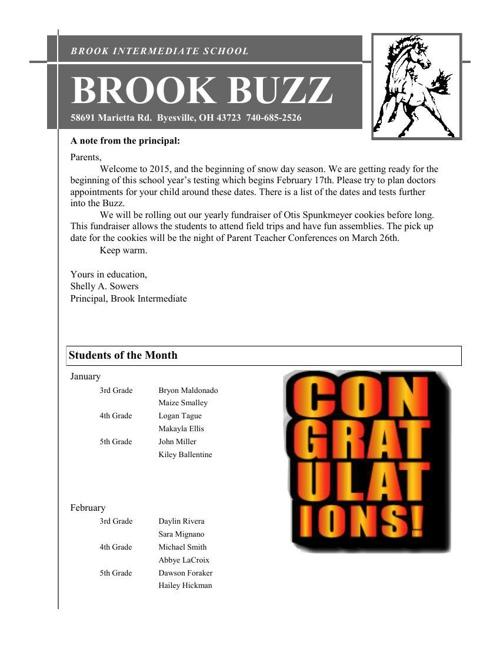 Brook Buzz: January Edition