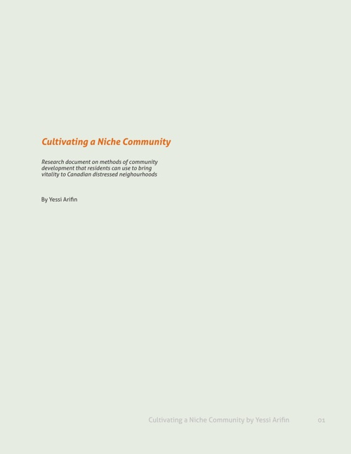 Cultivating a Niche Community