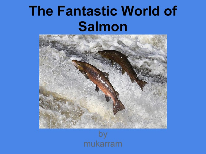 The Amazing World of Salmon