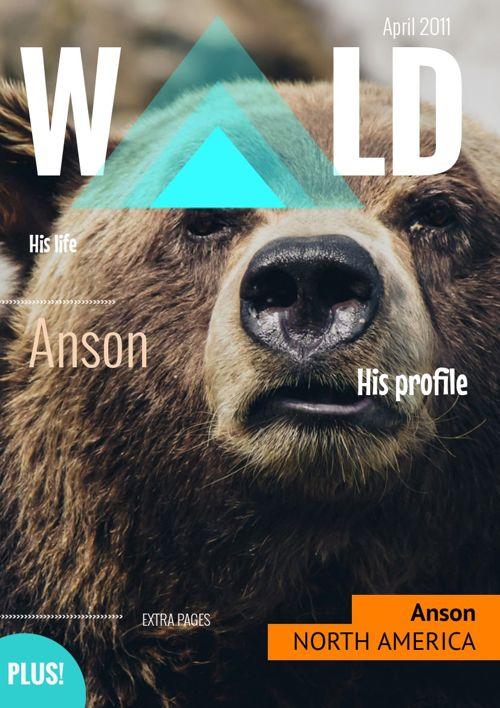 Anson file