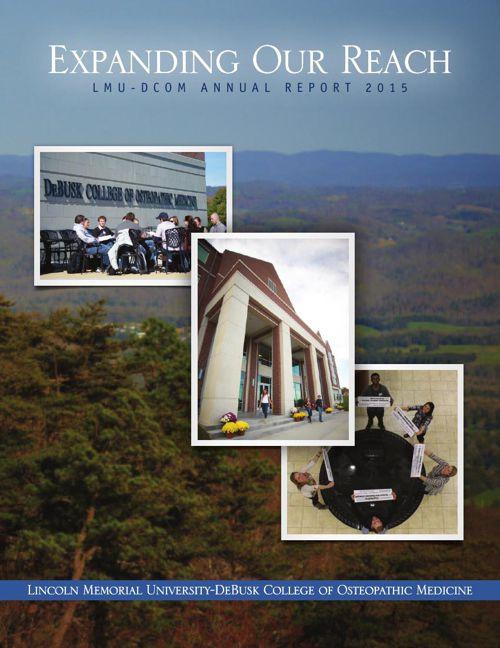 2015 LMU-DCOM Annual Report