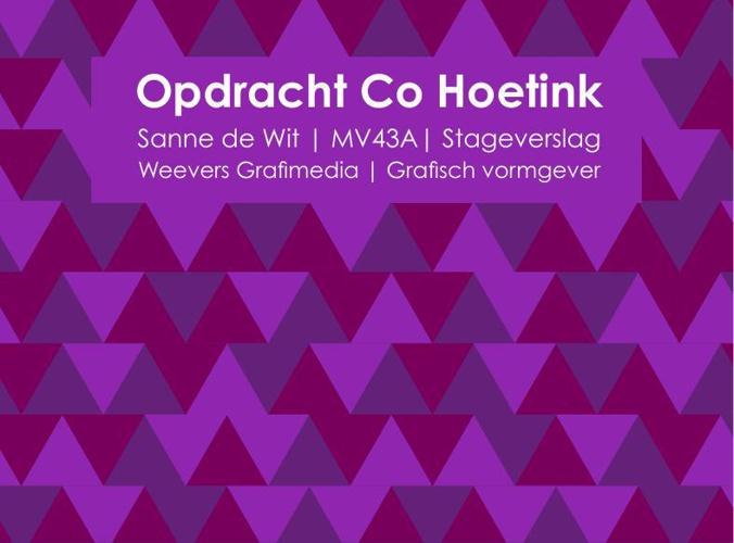 stageverslag Co Hoetink