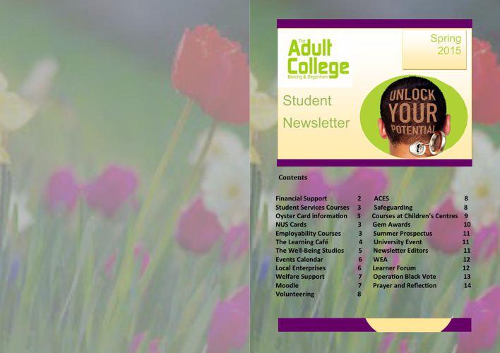 Newsletter- online version