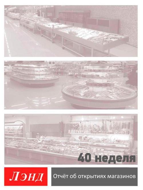 Отчет Арнег 40