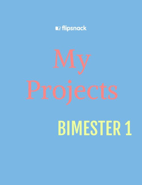 MY PROJECTS BIMESTER 1