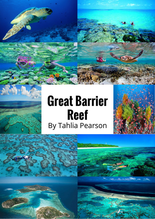 Great Barrier Reef by Tahlia Pearson