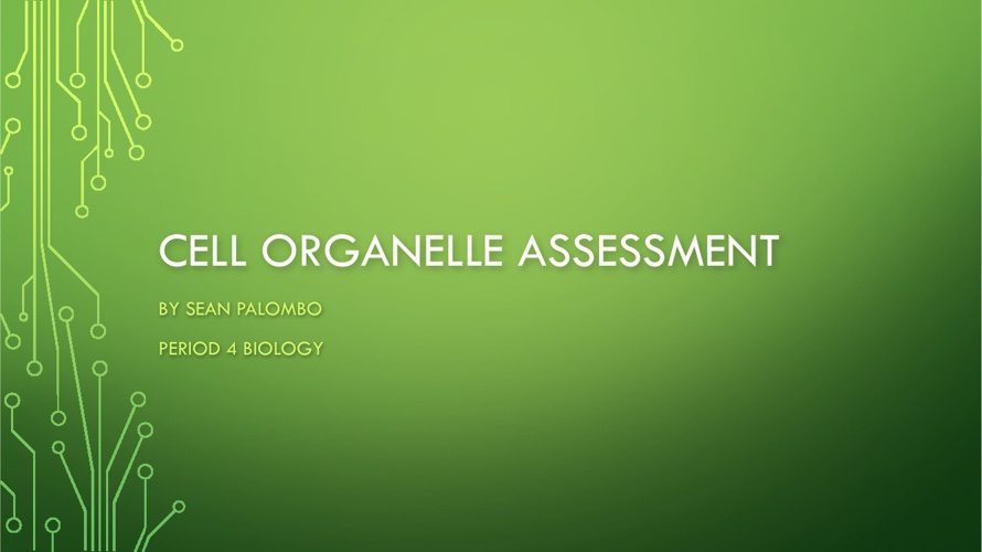 Cell Organelle Assessment