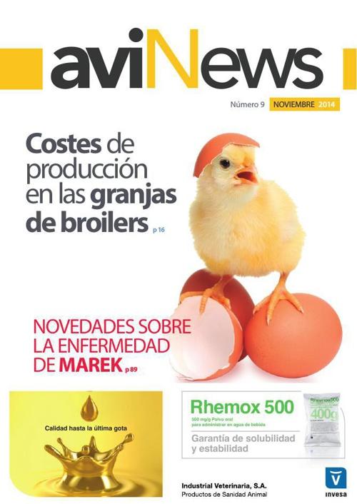 avinews-octubre-2014-web