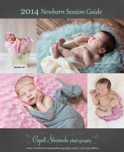 Newborn Session Guide