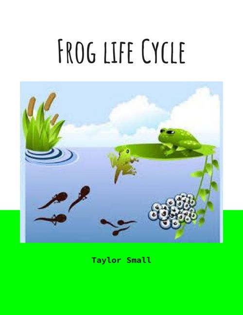 frog book - taylor small