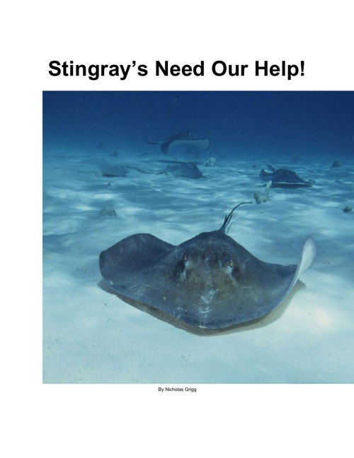 Stingrays Need our Help