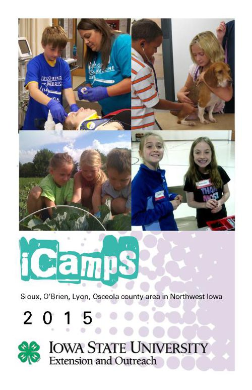 2015 iCamp Booklet _Full Page_cg