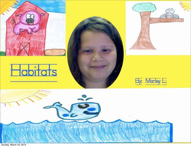Marley's Habitat Book