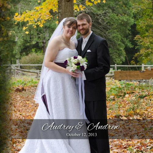 Audrey and Andrew's Album