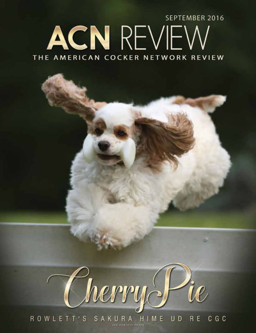 ACN-REVIEW-Sept-2016-Flip