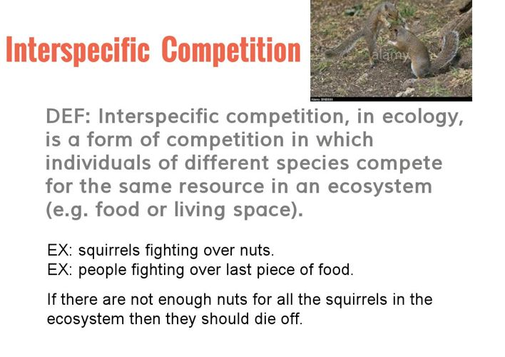 COMPETITION SPECIES PROJECT