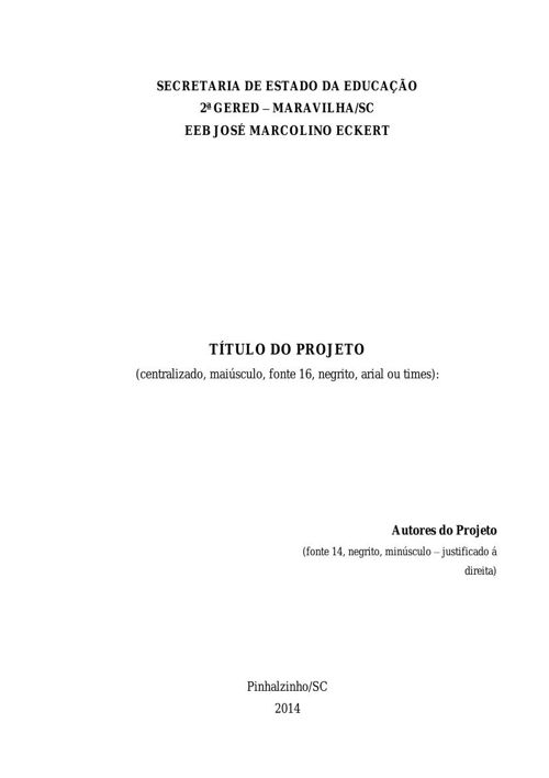 Anexo 5 Relatório da pesquisa metodológica