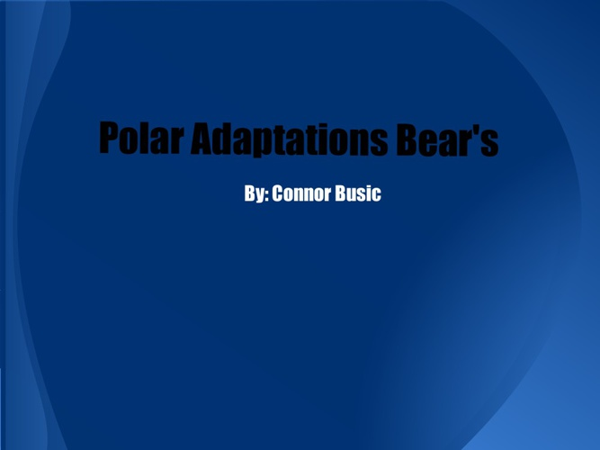 The Polar Bear's Adaptations