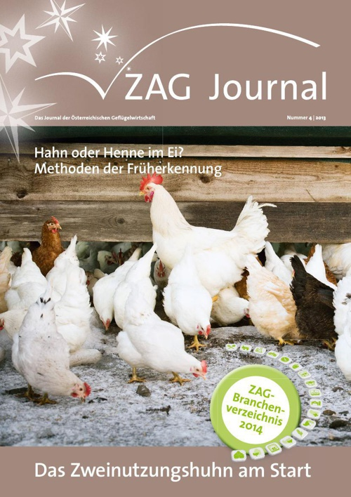 ZAG Journal 04 2013