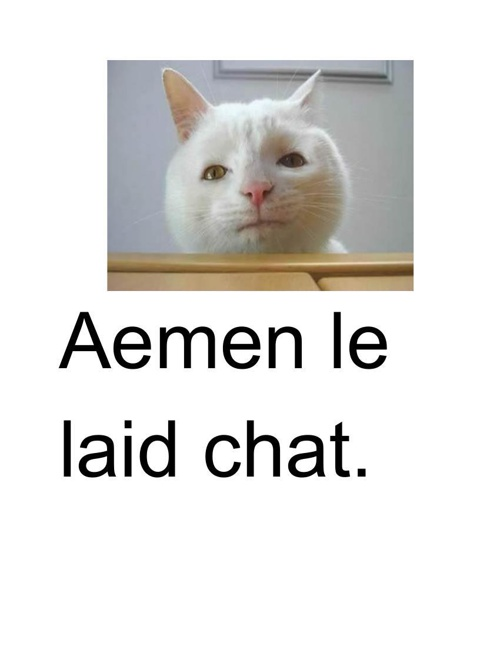 Aemen the Ugly chat