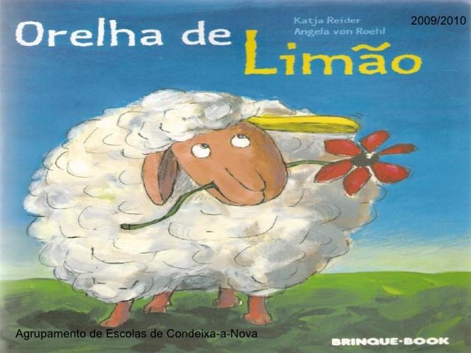 ORELHA DE LIMÃO