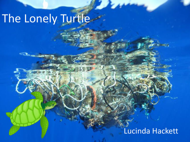 Picture Book Lucinda Hackett