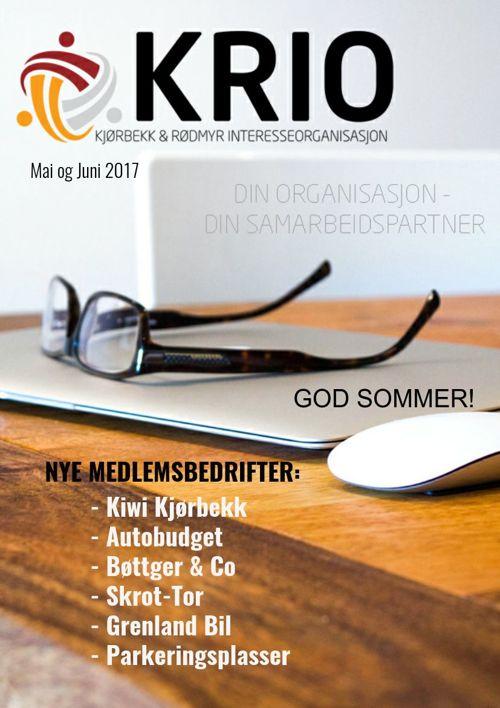06 2017 Kjørbekk & Rødmyr Intere