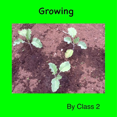 growing ebook