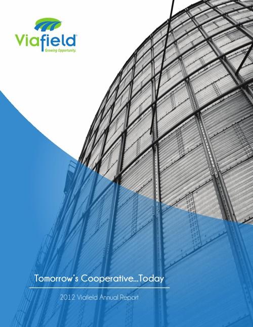 Viafield Annual Report 2012