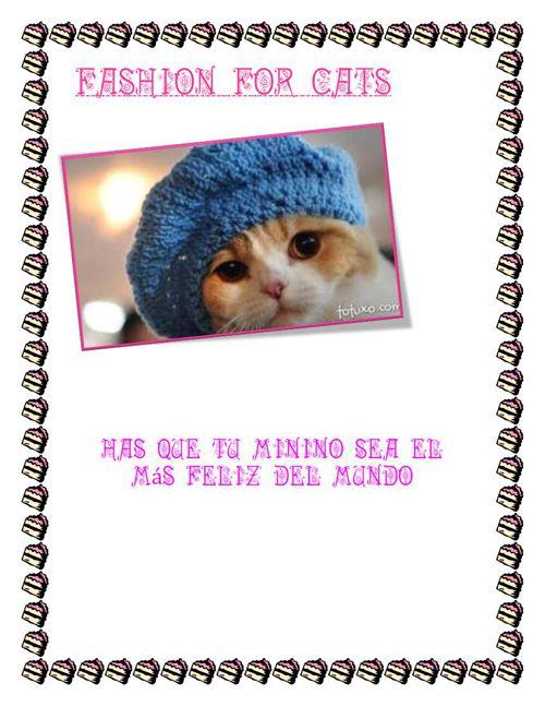 Fashion for cats catalogo MARYBET
