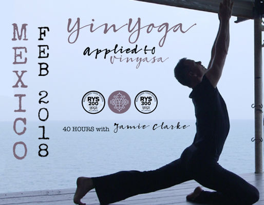 40 Hrs Yin Applied to Vinyasa- Guanajuato 2018