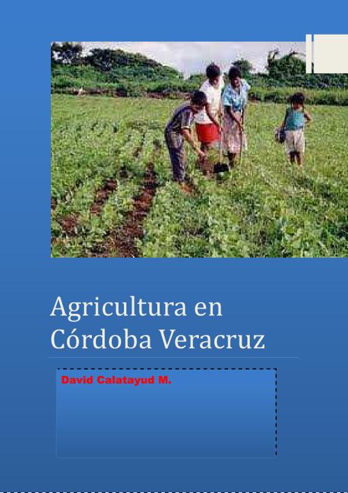 Agricultura en Cordoba Veracruz