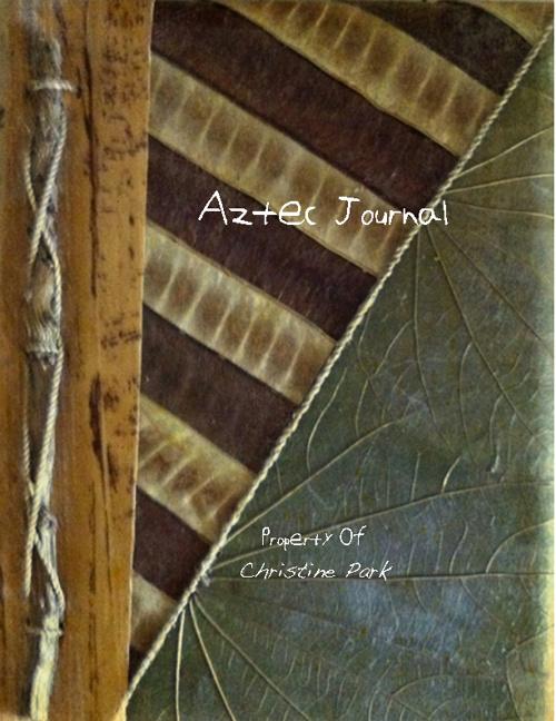 Park_Christine Aztec Journal 12 PM
