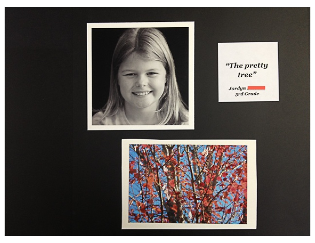 3rd Grade Photography Project