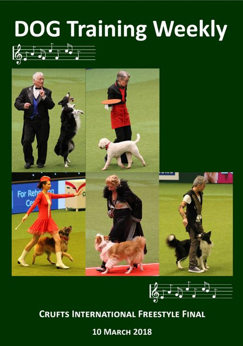 Int Freestyle Crufts 2018 (Saturday)