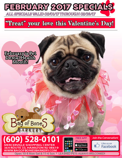 Bag of Bones Barkery February 2017 Flyer
